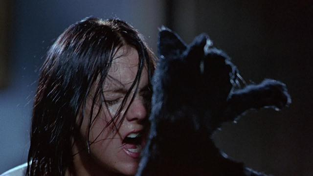 Scary Movie 2 - Cat Fight